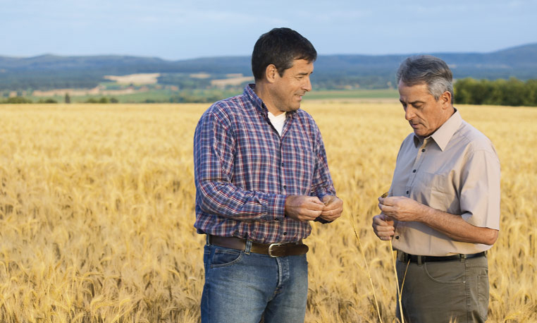 Agricultural Management Solutions